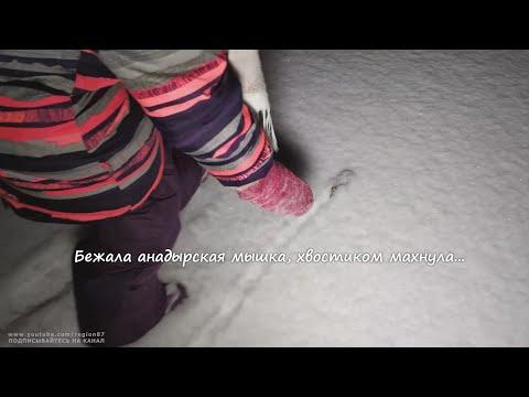 Про анадырскую мышку и конфеты. Будет Весело! Анадырь Чукотка Дальний Восток Арктика