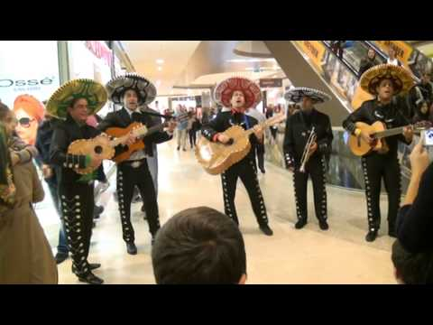 While these folks -- the Little Mariachi Band -- won't be the ones performing, mariachi music will be featured at the Old Tappan Public Library's fiesta celebration.