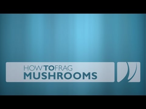 How to Frag Mushrooms