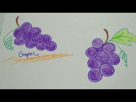 Mudah Gampang Menggambar Buah Anggur Untuk Anak Simple Easy How