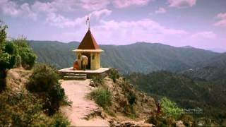 India   Kingdom of Tigers   HD