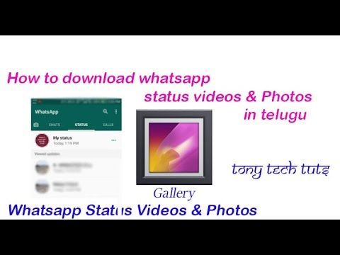 How To Download Whatsapp Status Videos In Telugu