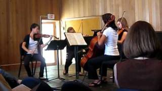 Play String Quartet In G Minor D 173 Allegro