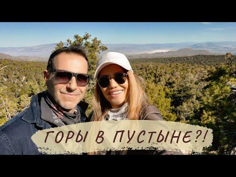 Путешествие по Америке: Горы в пустыне? Убежали от жары в Лас Вегасе в Spring Mountains