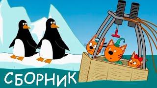 Три Кота | Cборник самых свежих серий | Мультфильмы для детей