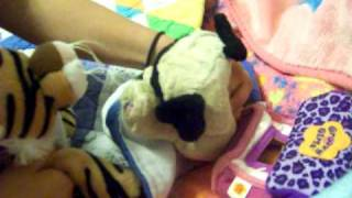 Webkinz Gives Birth to 4 babies  (Lil' Kinz)  Part 1