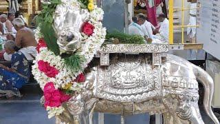 Pradosham Live - 3rd Jan 2019- Rathnagiriswarar Temple