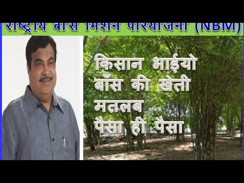 Excellent Speech Of Nitin Gadkari On Bamboo Farming & Production