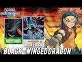 【Yu-Gi-Oh! Duel Links】Black-Winged Dragon