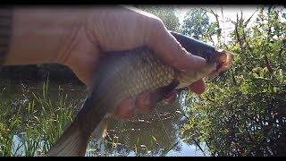 Поплавок. Рыбалка на удочку. Казачьи Лагери