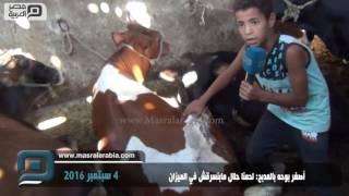بالفيديو| أصغر بوحه في المدبح: لحمنا حلال ومبنسرقش في الميزان