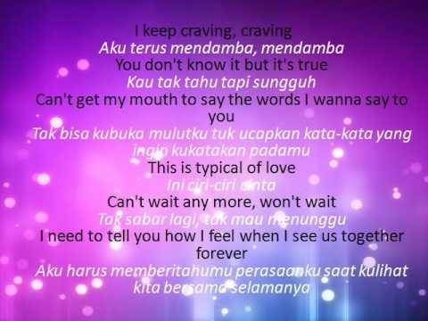Terjemahan Lirik Lagu Shawn Mendes - Imagination