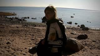 Финский залив Озерки Терпуг