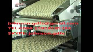 biscuit production line / biscuit plant / biscuit machine