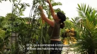 Green Guerilla Brésil : le jardin communautaire