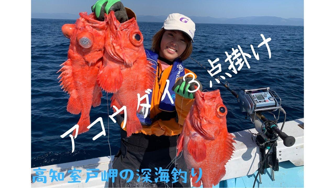 【室戸岬】深海釣り長回しラジオ【アコウダイ】 - YouTube