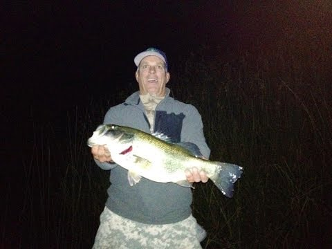Night Time Bass Fishing