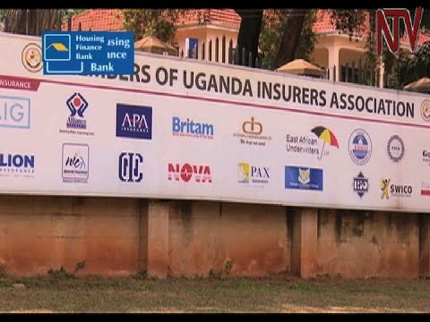 Insurance sector looks towards reaping from oil and gas boom