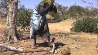 Genocide Again: Darfur