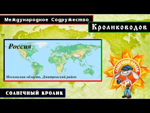 Кролики Московская область. Дмитровский район