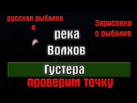 Русская рыбалка 4(рр4) - река Волхов. Густера. Зарисовки о рыбалке.