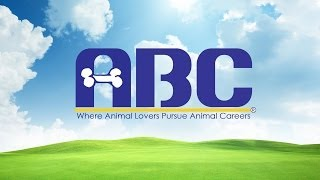 Animal Behavior College - School For Dog Trainers