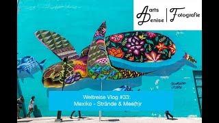 Weltreise Vlog #33: Mexico´s Strände & Mee(h)r
