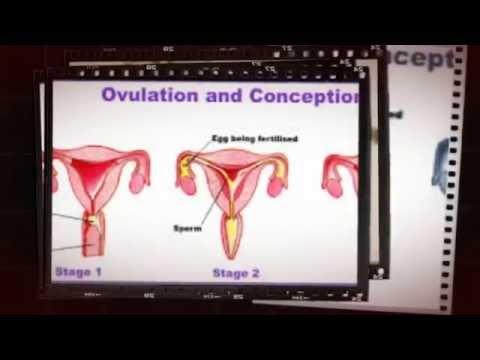 Vaginal Bleeding Days After Sex