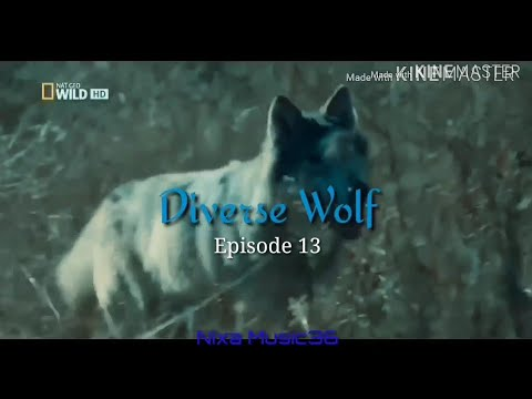 EXO FF - Diverse Wolf [EP13]