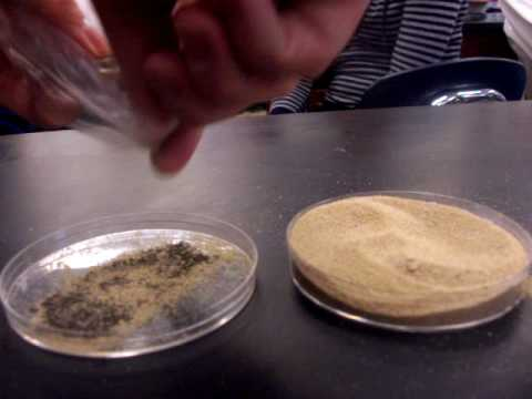 Separation: Iron & Sand Mixture - YouTube