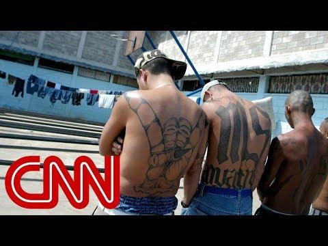MS-13 gang members: Trump makes us stronger