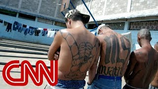 MS-13 gang members: Trump makes us stronger