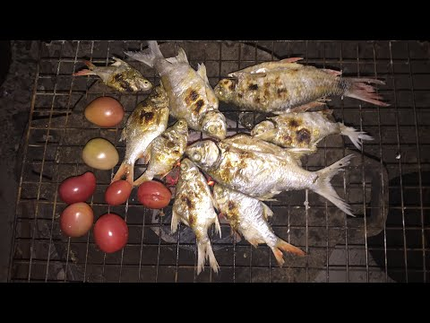 Fishing for cooking, eat breakfast. Local food in Laos is very yummy