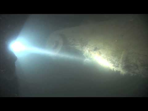 Discoveries of the Deep: Undersea Exploration