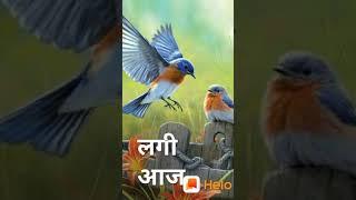 Lagi Aaj Sawan Ki Phir Wo Jhadi Hai# nice #Sawan #song #lovelyMishra#