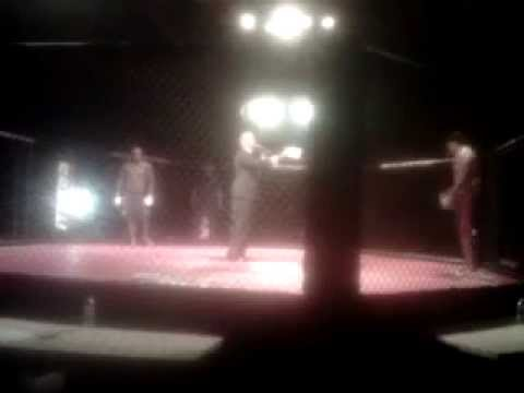 DeShawn Stevenson Mma Fight