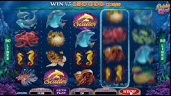 Free Play Dolphin Quest Online Pokies Slot Game Here