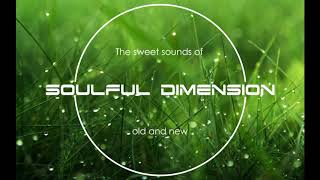 Video Soulful Dimension 36 - Soulful House Session from Old Channel download MP3, 3GP, MP4, WEBM, AVI, FLV Juli 2018