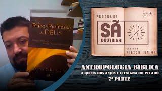 Antropologia Bíblica, Parte VII - A queda dos anjos e o enigma do pecado | Sã Doutrina