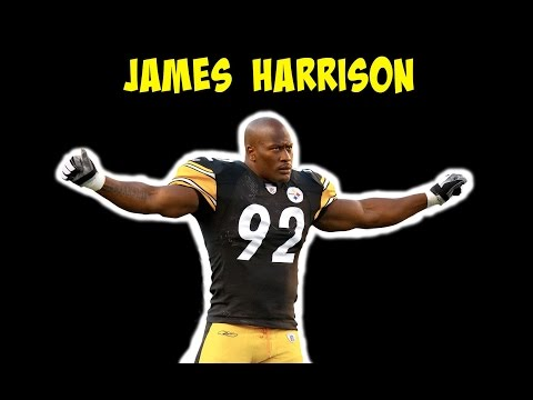 James Harrison (Steelers Highlights)