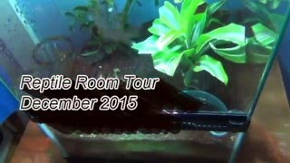 Reptile Room Tour December 2015