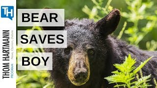 Three Year Old Boy Hung Out with a Bear and Lived