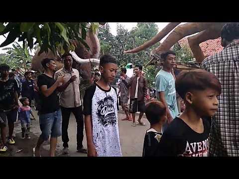 Arak-arakan Tradisi Tahunan Desa Wanasaba Kab Cirebon