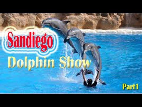 California Travel Destinations & Attractions | Visit Seaworld San Diego Dolphin Show 2016 Part1