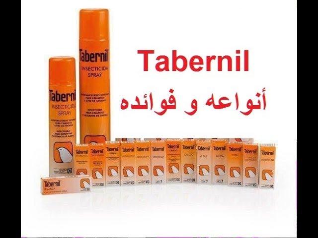 ?????? ?????? ? ??????__Tabernil
