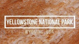 Yellowstone National Park, Wyoming, USA With Best Relaxation Music