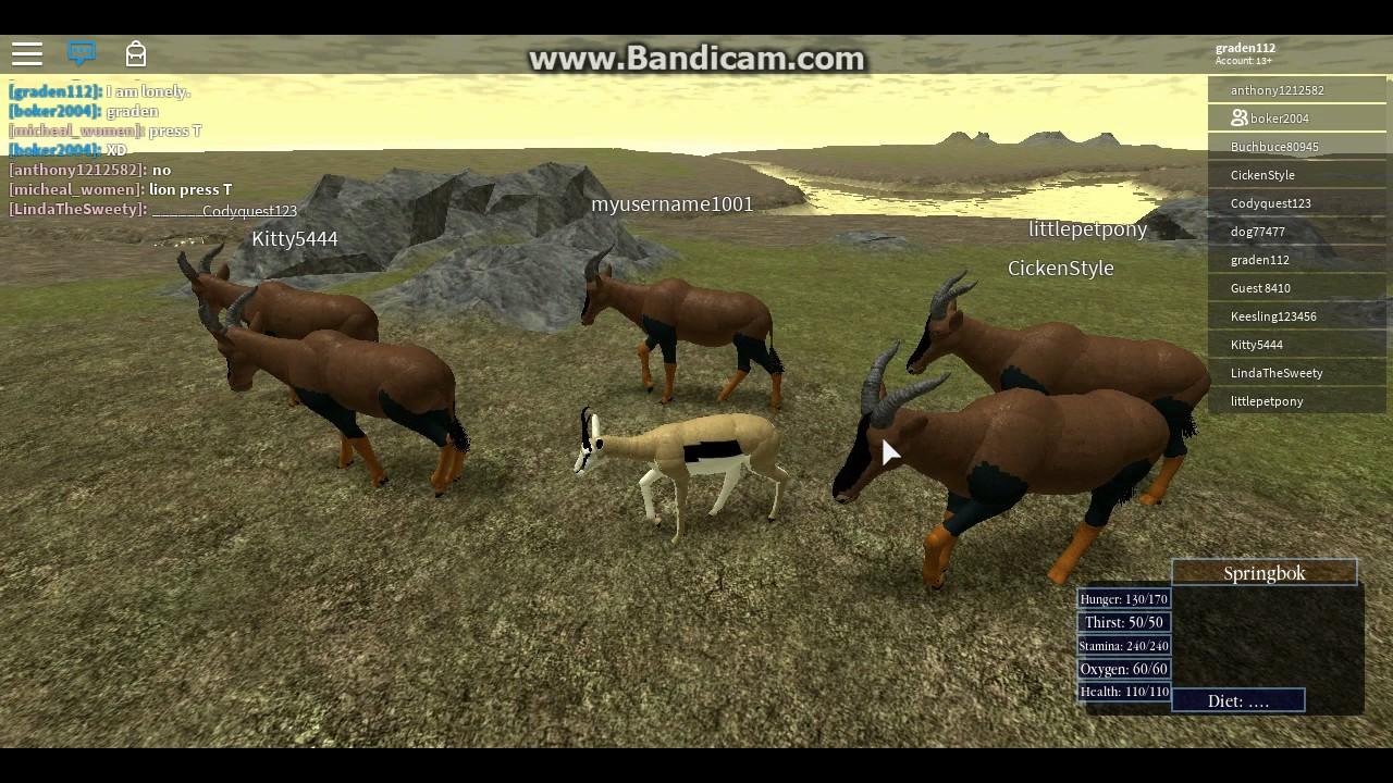 [Roblox: Wild Savannah] Lions!!! (Massive Topi herd) - YouTube