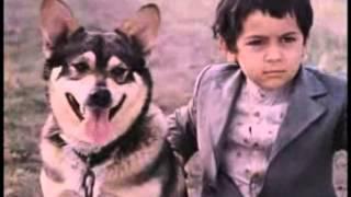 МУЖИКИ (1981) Сцена с собакой (Насте)