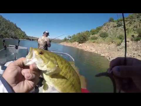 Fishing A Wacky Rig Don Pedro Lake Day 1 Of 2 Youtube