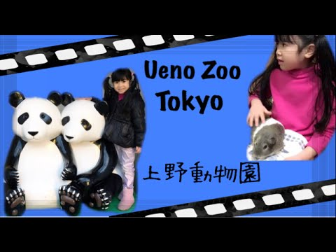 tokyo-with-kids-:-visited-ueno-zoo-tokyo-•-fun-place-to-visit-with-kids